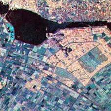Figure 3: Image of land use.
